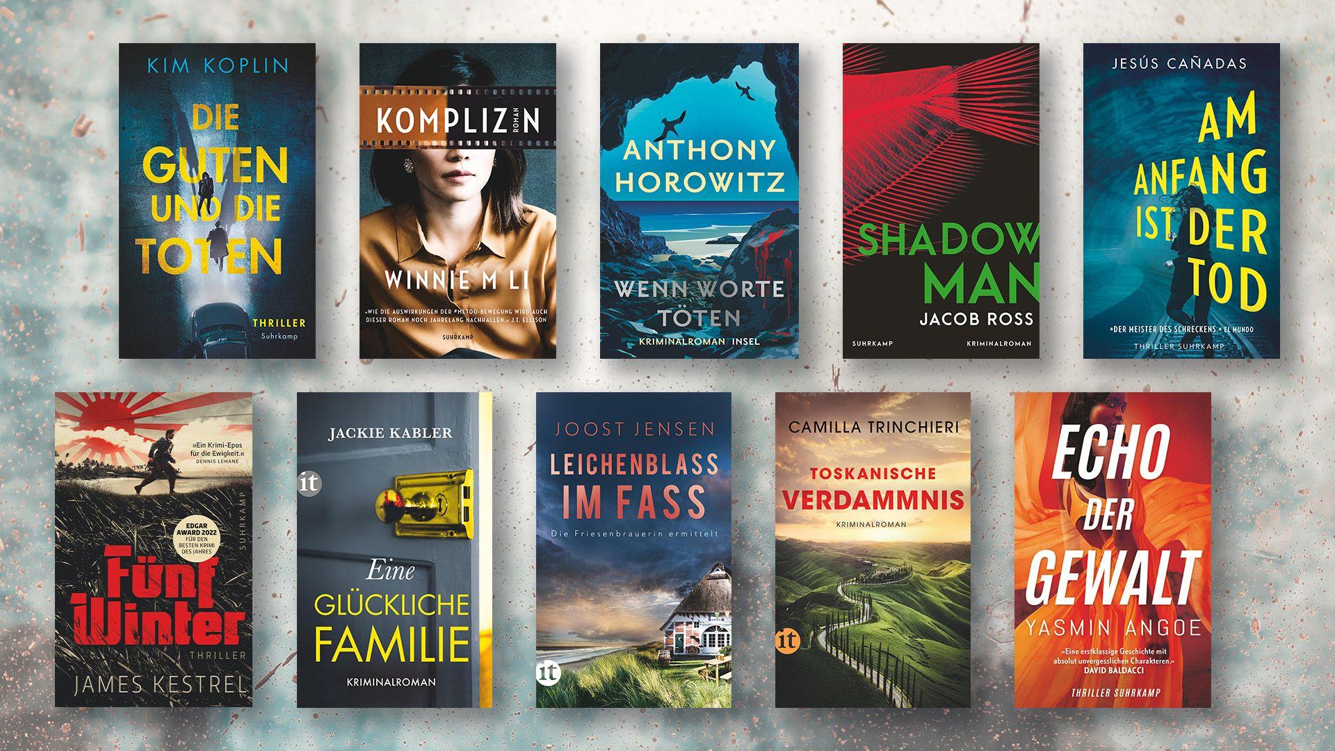 Zehnmal Nervenkitzel: Die besten Krimis und Thriller für den Sommer